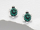 Sterling Silver Tortoise Earrings with Emerald Crystals 747