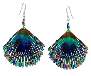 Peacock Feather Earrings 659