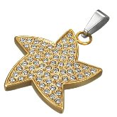 Stainless Steel CZ Starfish Pendant 202