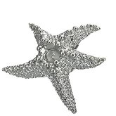 Stainless Steel Starfish Pendant 521