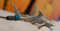 Designer Pewter Grey Reef Shark Necklace