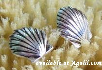sterling silver scallop post earrings DE 795